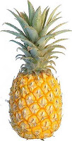 Can pregnant women eat pineapples and papayas?